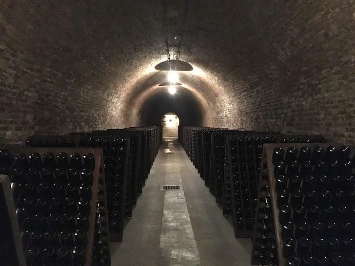 Champagne Ayala wijnkelder
